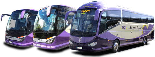 Empresa de Transporte de Viajeros por carretera